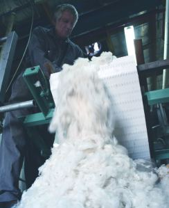 wool scouring